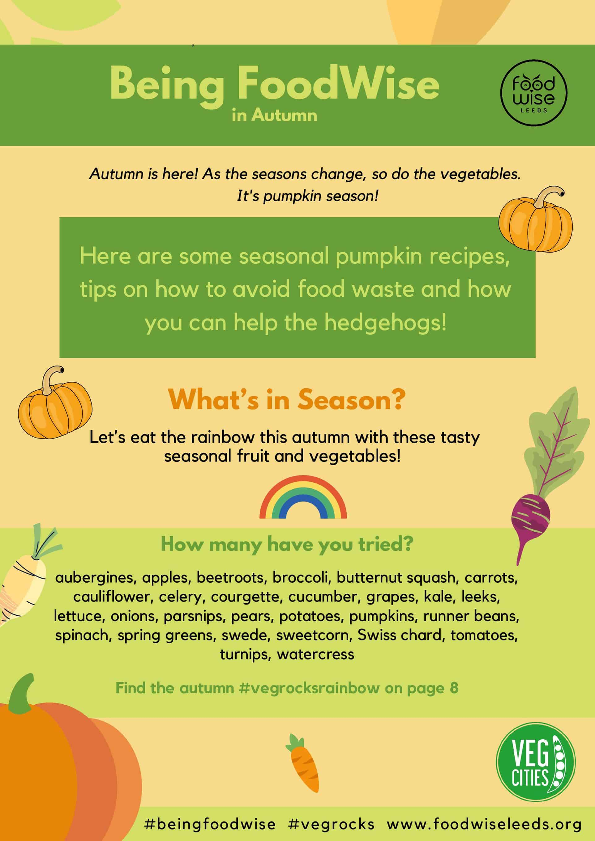 It's Time to #EatYourPumpkin! Being FoodWise Autumn Toolkit